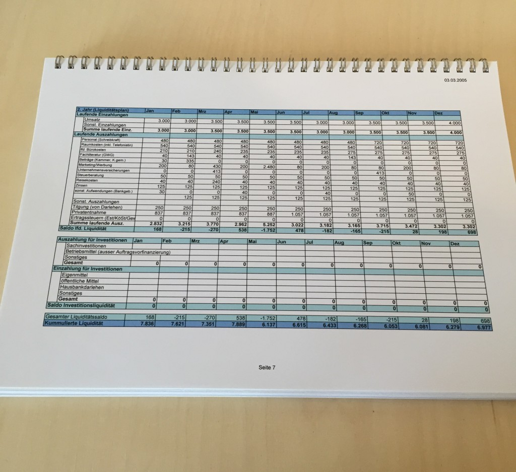 Liquiditätsplan